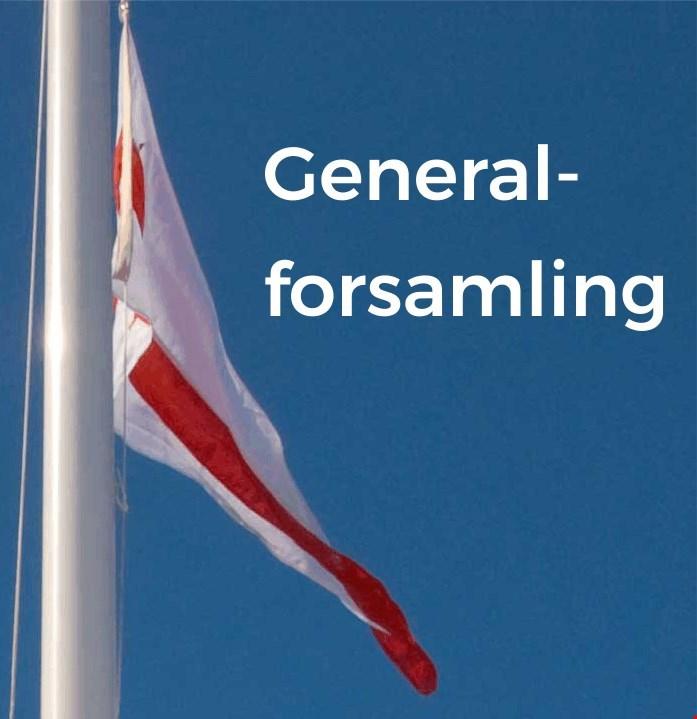 Generalforsamling 2017