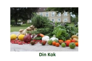 Din Kok